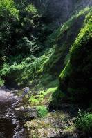 Bushkill Falls 4