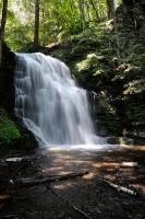 Bushkill Falls 5