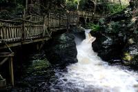 Bushkill Falls 10