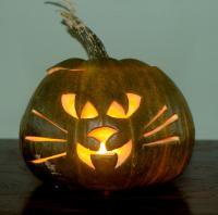 Scary Cat Pumpkin
