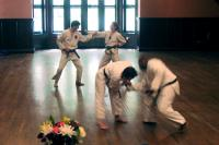 Hapkido & 3-Step Sparring