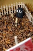 Elisa's Tree House restless bones