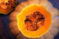 Pumpkin Juicey Center