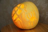 Gabriella's Pumpkin