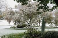 First Snow, 2011 / Halloween decorations