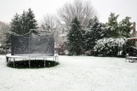 First Snow, 2011 / Trampoline