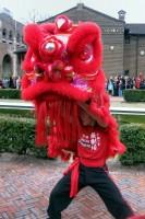 Dragon Dance Chinese New Year 2012