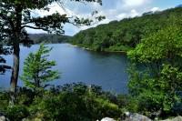 Vista overlooking Sunfish Pond