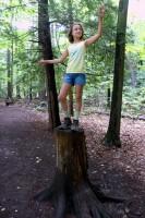 Elisa's Impression of a Tree